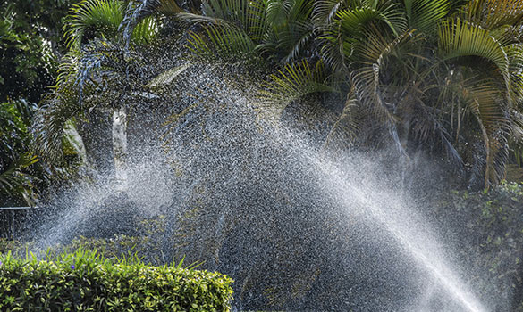 Landscape Irrigation Systems Myrtle Beach SC