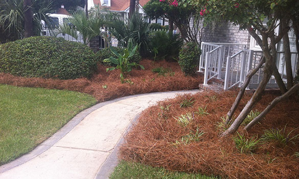 Mulch Installation Myrtle Beach SC