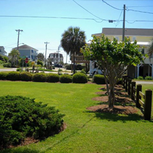lawn fertilization myrtle beach sc