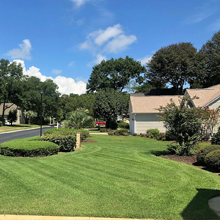 landscaping maintenance pawleys island sc